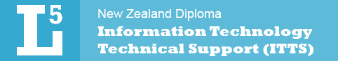 Level 5 Information Technology Technical Support Diploma