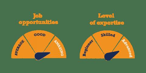 Level 6 Software Development Diploma